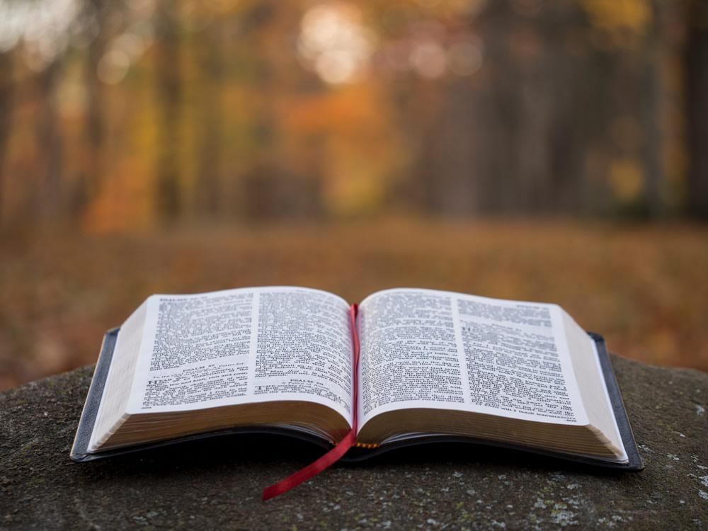 Liturgia para o Dia da Bíblia | 2019